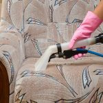 Top Dog Carpet Cleaning